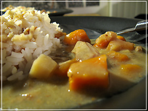 http://michirukaioh.free.fr/taistoietmange/uk-us/irish-stew2.jpg